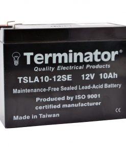 TSLA 10-12SE
