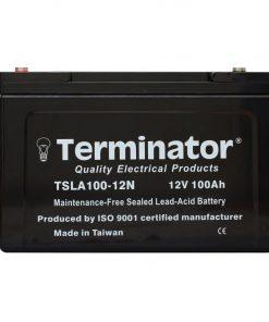 TSLA 100-12N