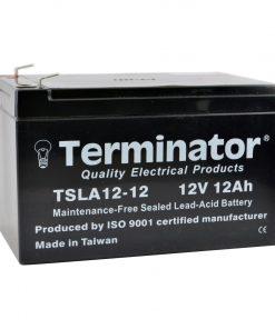TSLA Battery 12V-12