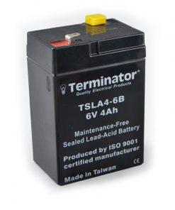 TSLA Battery 6V-4